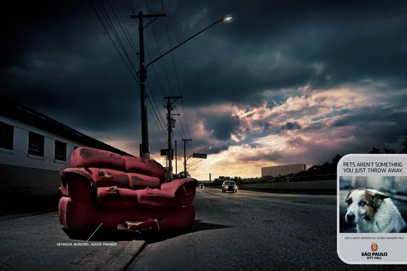 sofa abbandonato - cani abbandonati