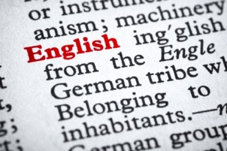 google traduttore fa vittime - inglese web marketer