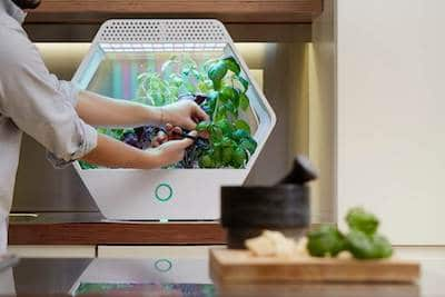 Linfa-Robonica idea regalo nerd tecnologica